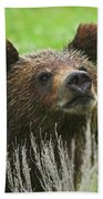 Grizzly Cub Bath Towel