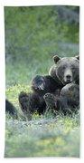 Grizzly Romp - Grand Teton Bath Towel