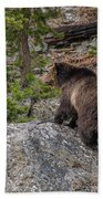 Grizzly Sow In Yellowstone Park Bath Towel