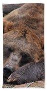 Grizzly's Naptime Bath Towel
