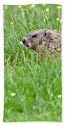 Groundhog In A Field Of Flowers Bath Towel