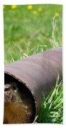 Groundhog In A Pipe Bath Towel