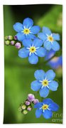Group Of Blue Flowers Forget-me-not Bath Towel