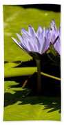 Group Of Lavender Lillies Bath Towel
