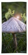 Growing Mushrooms Hand Towel