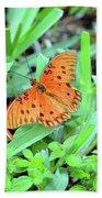 Gulf Fritillary Butterfly  Bath Towel