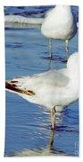 Gull - Beach -reflection Bath Towel