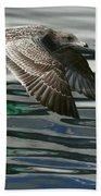 Gull Flight Bath Towel