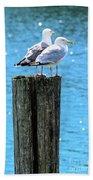 Gulls On Piling Hand Towel