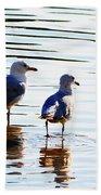 Gulls Bath Towel