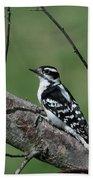 Hairy Woodpecker Bath Towel