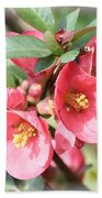 Happy Spring Flowering Quince Card And Poster Bath Towel