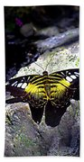 Hard Landing--clipper Butterfly Bath Towel