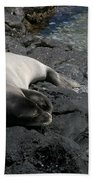Hawaiian Monk Seal Ilio Holo I Ka Uana Bath Towel
