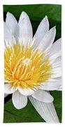 Hawaiian White Water Lily Hand Towel