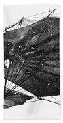 Hawk Glider, 1896 Bath Towel