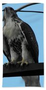 Hawk Urban Hunting Bath Towel