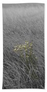 Hay Daisy In The Fog Bath Towel