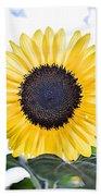 Hdr Sunflower Bath Towel