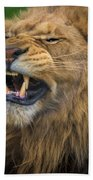 Hear Me Roar Bath Towel
