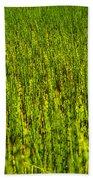 Heather Lake Grass 2 Bath Towel