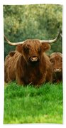 Heilan Coo Bath Towel