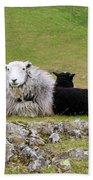 Herdwick Sheep On A Hillside In Cumbria Bath Towel