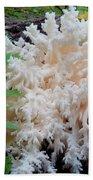 Mushroom Hericium Coralloid Bath Towel