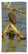 Heron And Turtle Bath Towel