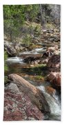 Hidden Beauty On The Trail Bath Towel