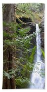 Hidden Rainforest Treasure Bath Towel