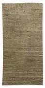 Hieroglyph V Bath Towel