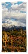 High Desert Snow Bath Towel