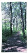 Hike In The Park Bath Towel