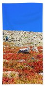 Hikers And Autumn Tundra On Mount Yale Colorado Bath Towel