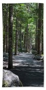 Hiking Trail At Brandywine Falls Provincial Park Bath Towel