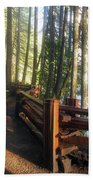 Hiking Trails At Lower Lewis River Trail Bath Towel