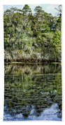 Hillsborough River Panorama 1 Bath Towel