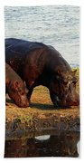 Hippo Mother And Child - Botswana Africa Bath Towel