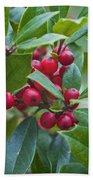 Holly Berries Bath Towel