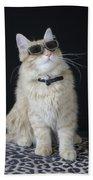 Hollywood Cat Hand Towel