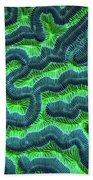 Honduran Brain Coral Bath Towel