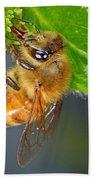 Honeybee Bath Towel