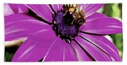 Honey Bee On A Spring Flower Bath Towel
