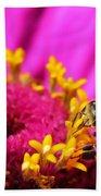 Honey Bee Pollinating Zinnia Bath Towel