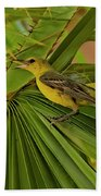 Hooded Oriole H01 Hand Towel