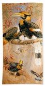 Hornbill  Bath Towel