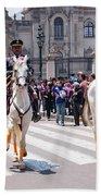 Horse Guard At Parade Bath Towel