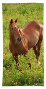 Horse In A Field With Flowers Bath Towel