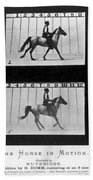Horse In Motion, 1878 Bath Towel